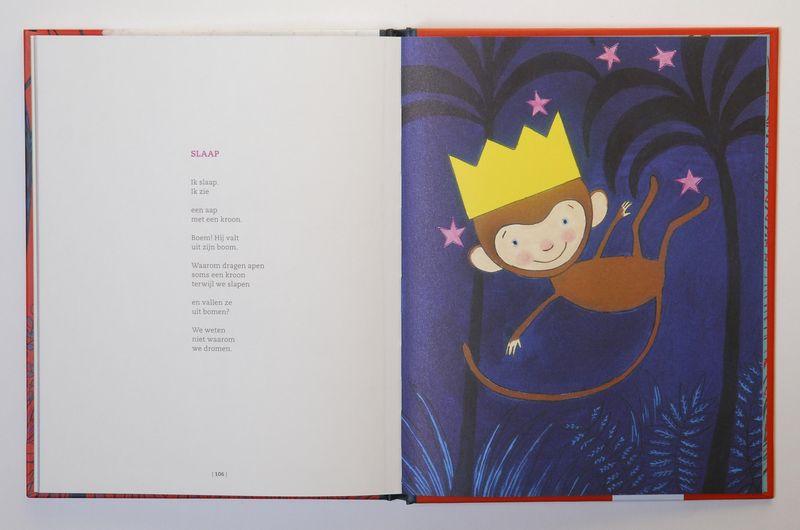 Illustratie Slaap in boek, Praagman