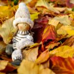 Prentenboeken over de herfst